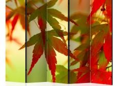 Paraván - Colourful leaves II [Room Dividers]